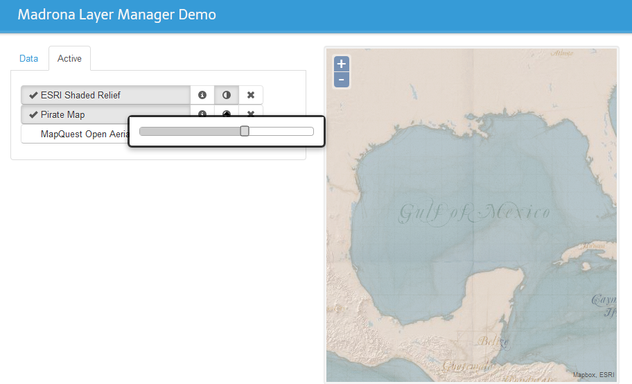 Data layer manager - Image 2